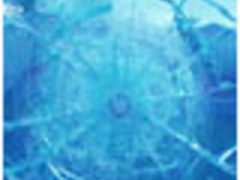Vidrios de seguridad - CLAISE VIDRIERIA  | CONSTRUEX